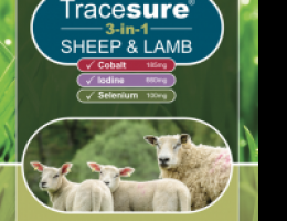 Tracesure 3-in-1 sheep and lamb 200 p (selen, jod, kobolt)