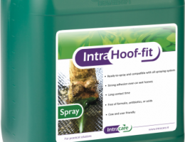 Intra Hoof-fit Spray, färdigblandad