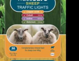 Tracesure Sheep Trafficlight för får 50p (Selen Jod Kobolt & Koppar)