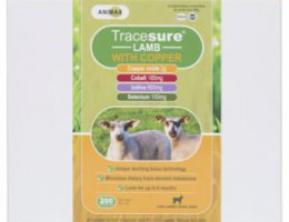 Tracesure Lamb with Copper 2 gram (selen, jod, kobolt & koppar)